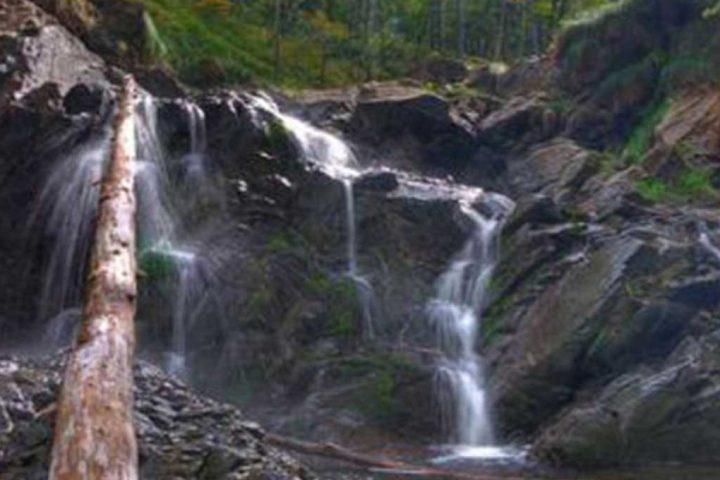 Hotel DIVČIBARE | Reke i potoci na Divčibarama
